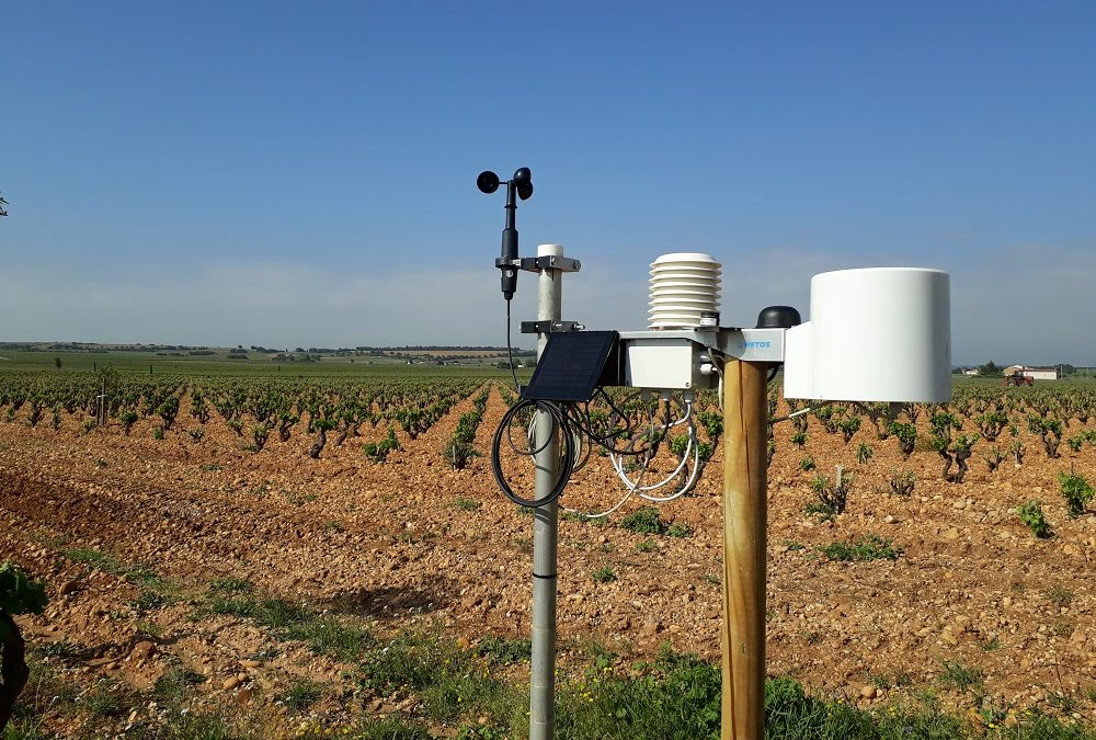 Pourquoi installer une station météo sur mon exploitation agricole?