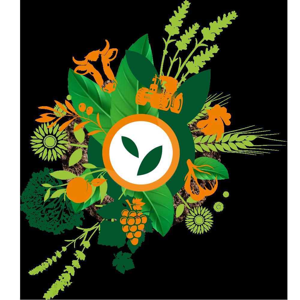 logo du techandbio avec une vache grappe de raisin arbre poule