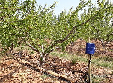 Pilotage de votre irrigation