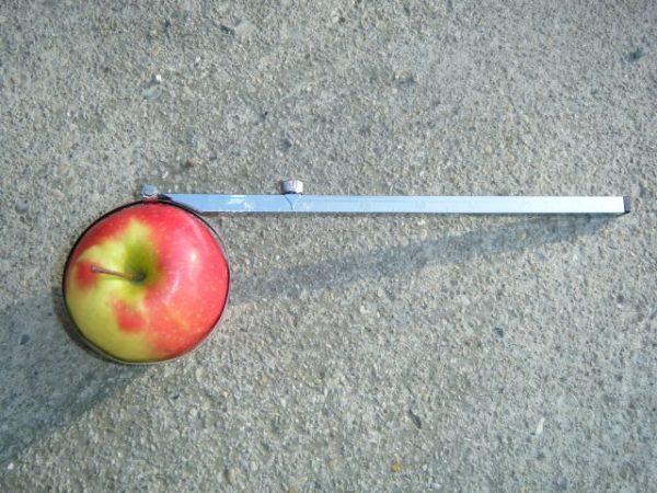 calibre_fruits
